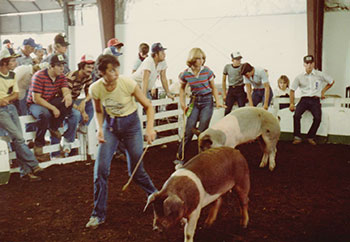 Showing hogs at the county fair as a teenager.
